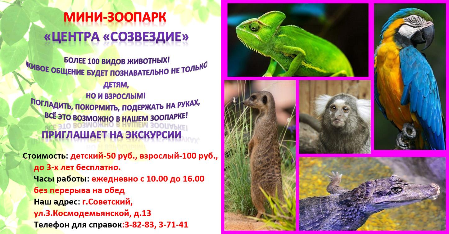 Мини-зоопарк Центра Созвездие